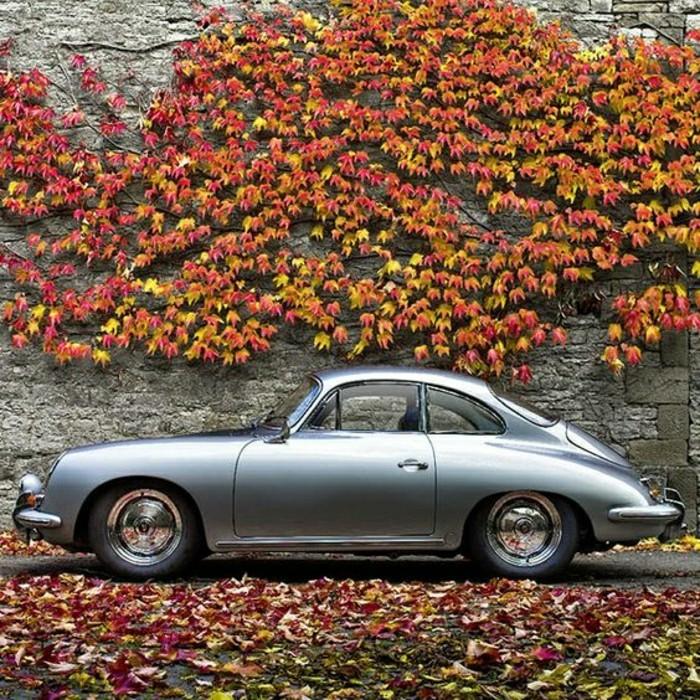 achat-voiture-de-collection-vieille-porsche-vehicules-de-collection-porsche-gris