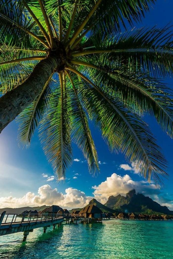 Une plage paradisiaque au bout du monde o passer vos vacances - Iles paradisiaques du monde ...