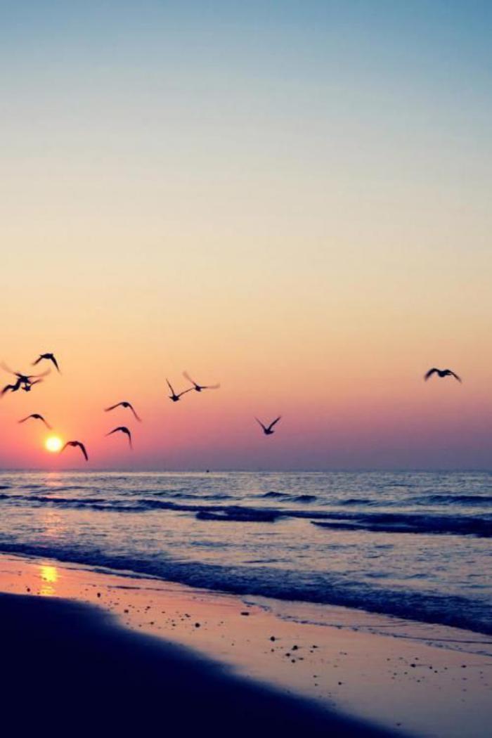 bord-de-la-mer-belle-plage-et-coucher-du-soleil