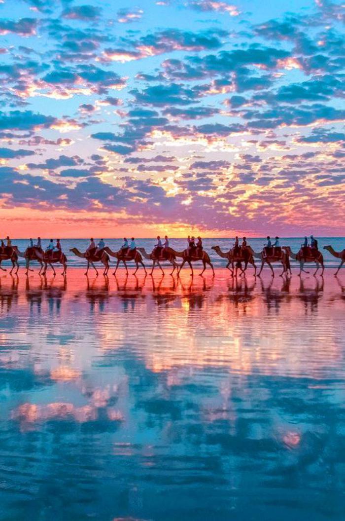 bord-de-la-mer-passage-de-chameaux-sur-la-plage