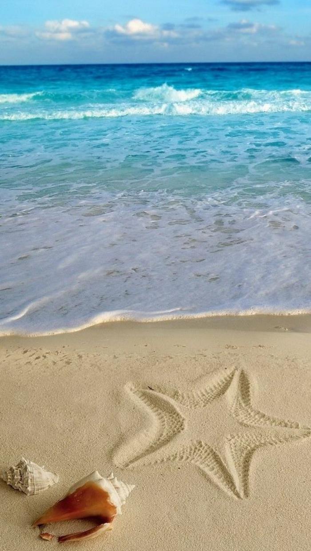 bord-de-la-mer-eaux-bleues-et-limpides