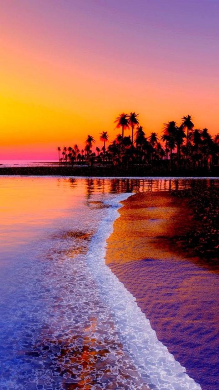bord-de-la-mer-la-côte-au-coucher-du-soleil