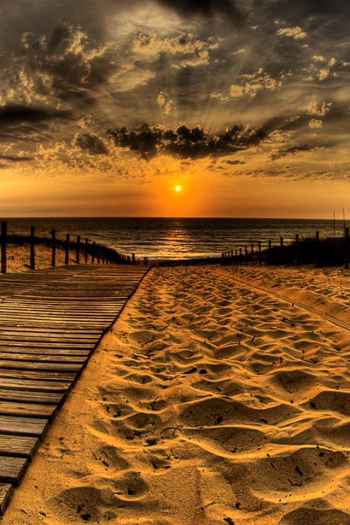 bord-de-la-mer-paysage-doré-des-rayons-du-soleil