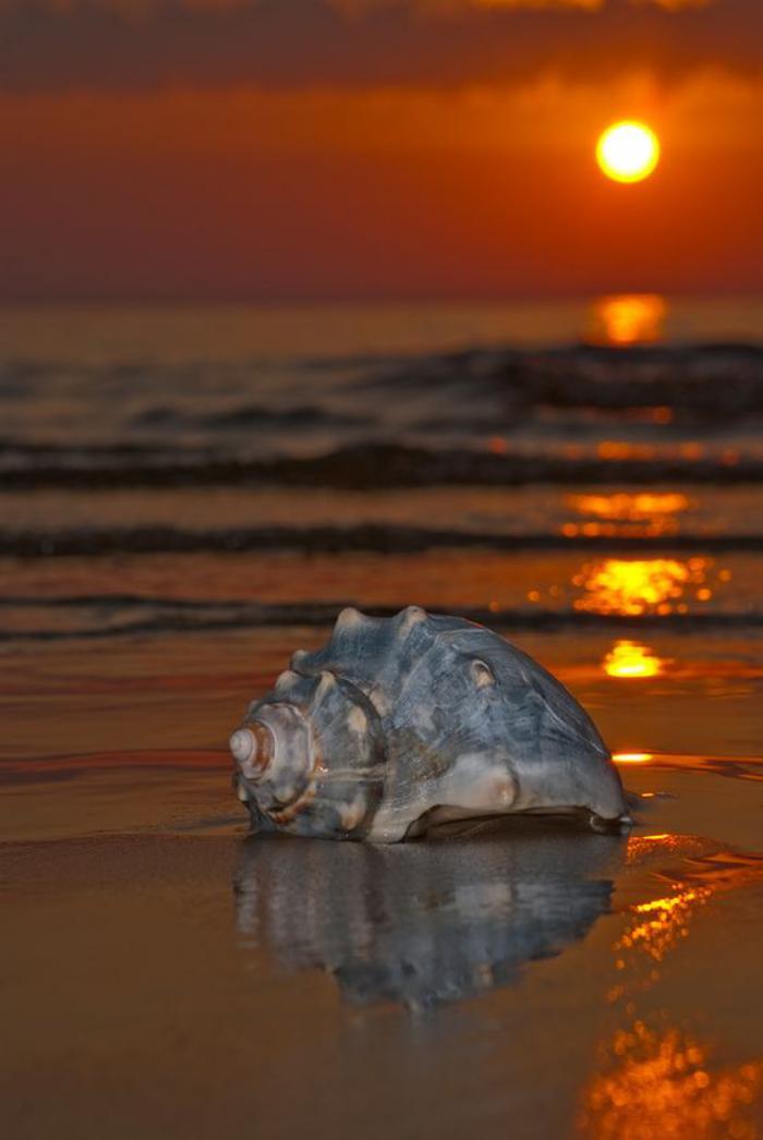 bord-de-la-mer-joli-coucher-du-soleil