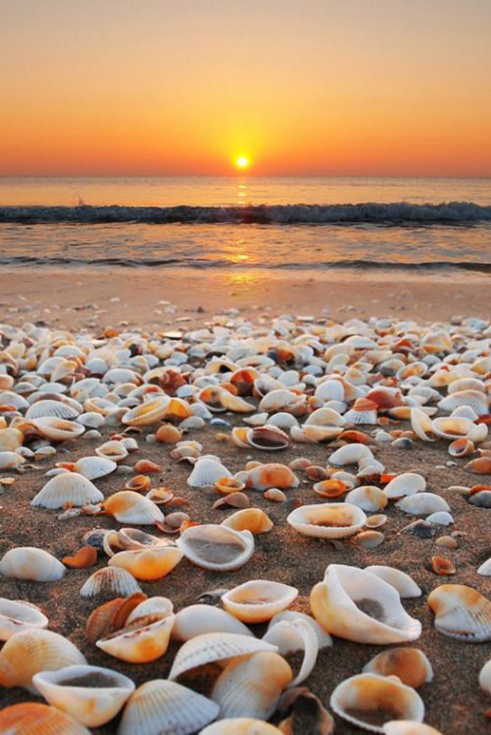 bord-de-la-mer-plage-magnifique-saisie-au-coucher-du-soleil