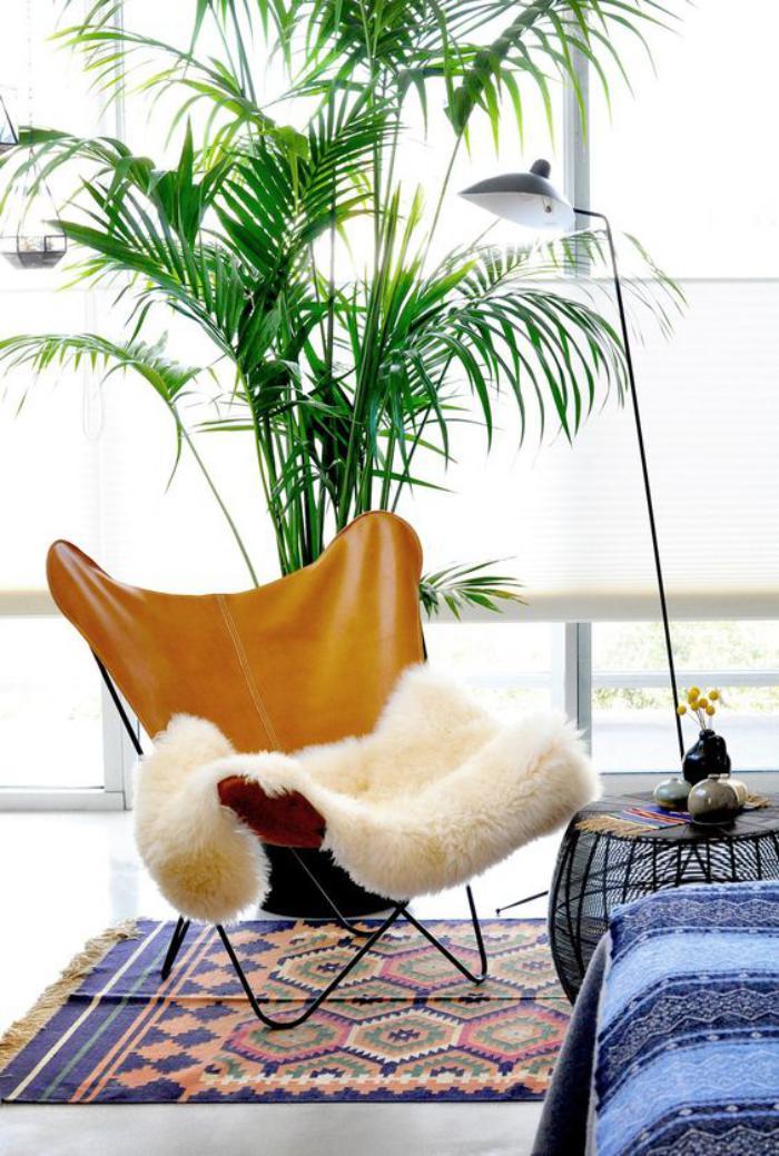 chaise-papillon-carpette-ethnique-et-plante-verte-d'intérieur