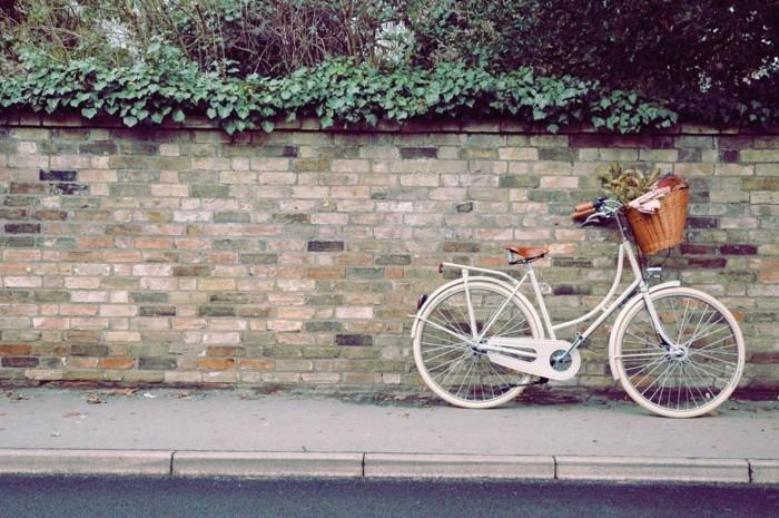 chouette-photo-voir-le-casquette-vélo-vintage-et-le-bicyclette-basket-fleurie