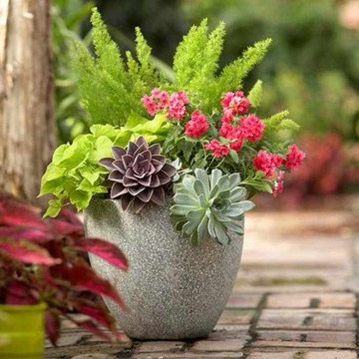 fleurs-d-exterieur-comment-fleurir-balcon-nos-idees-en-photos
