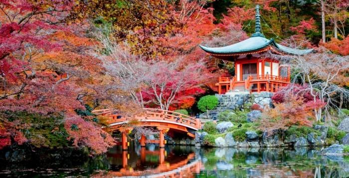 formidable-photo-japon-artistique-images-trop-belles-une-idee