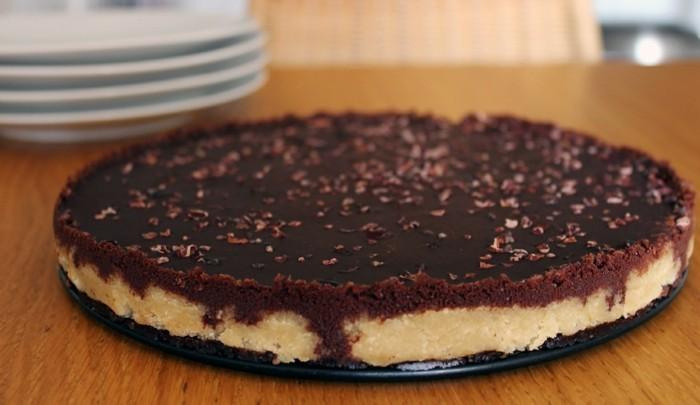 gateau-au-cacao-gateau-chocolat-en-poudre-gateau-nestlé