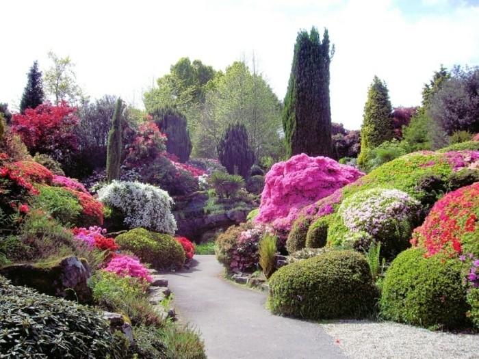 Le plus beau paysage fleuri voyez les meilleures images for Beautiful flower garden designs