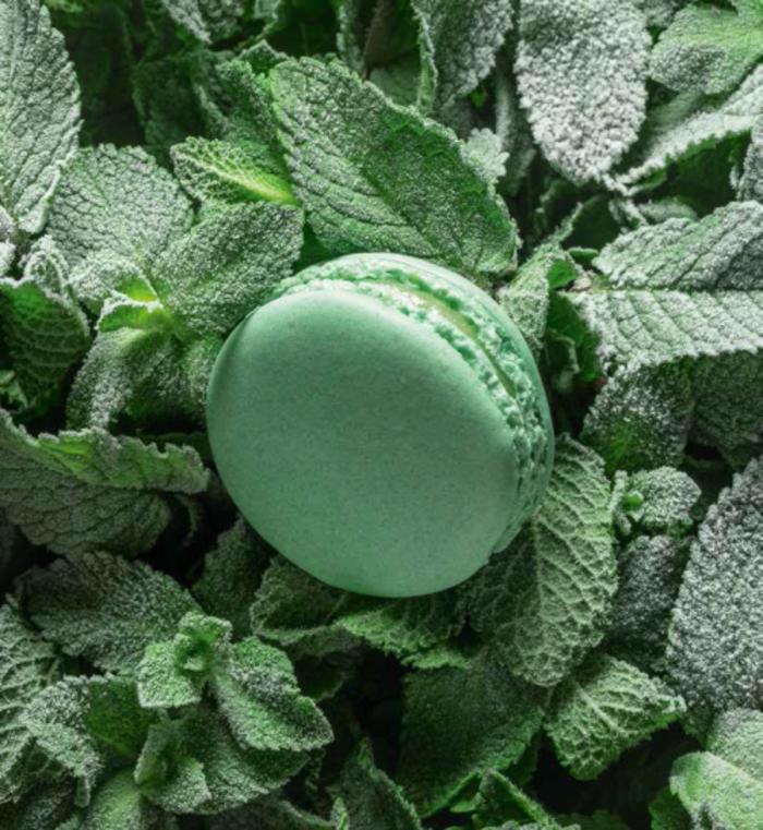 manger-bouger-macaron-ladure-artisan-patissier-cadeau-st-valentin-femme-macaron-menthe