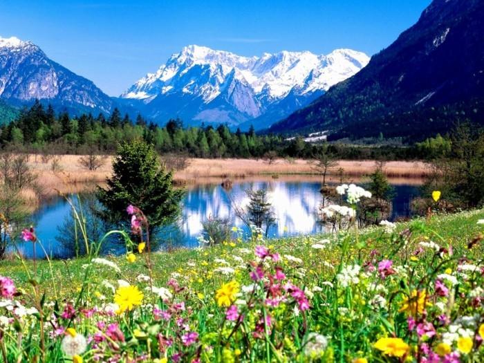 merveilleuse-image-soleil-levan-nature-belle-idée-de-photo-incroyable-vue-de-lac