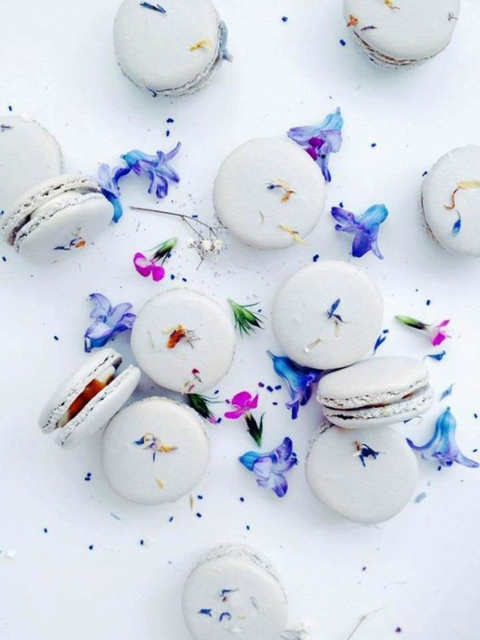 miraculeuse-lavande-superbe-macaron-laduré-macarons-laduree-gateaux-patisserie