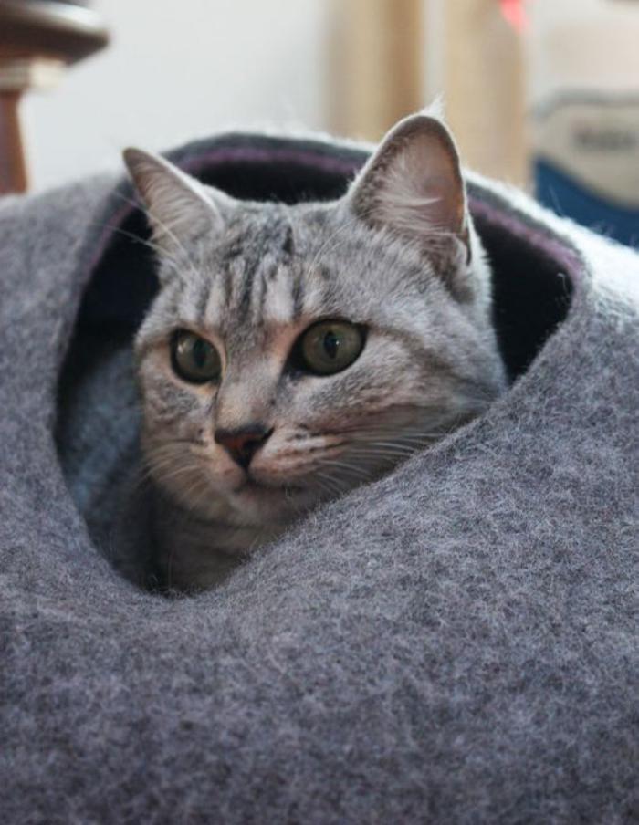 niche-pour-chat-grotte-de-chat-style-galet