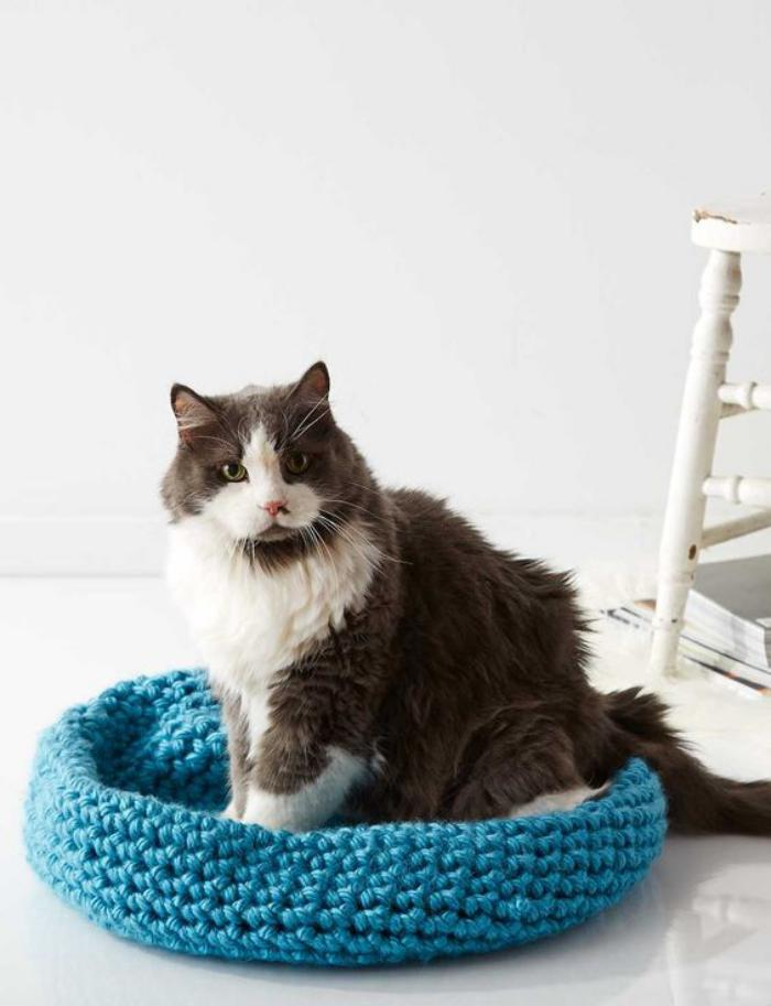 niche-pour-chat-un-lit-chat-tricoté-bleu