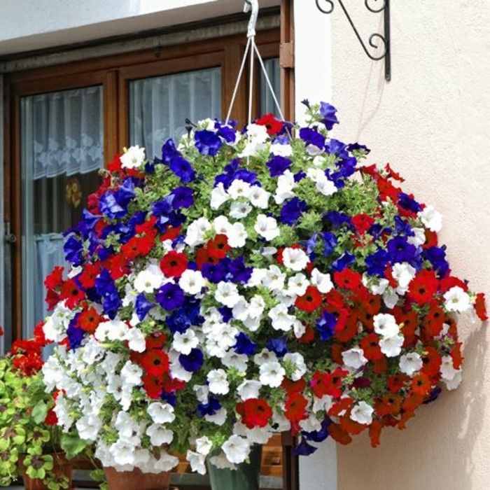 petit-balcon-avec-beaucoup-de-fleurs-colores-rouges-blancs-violettes-nos-idees-deco-avec-fleurs