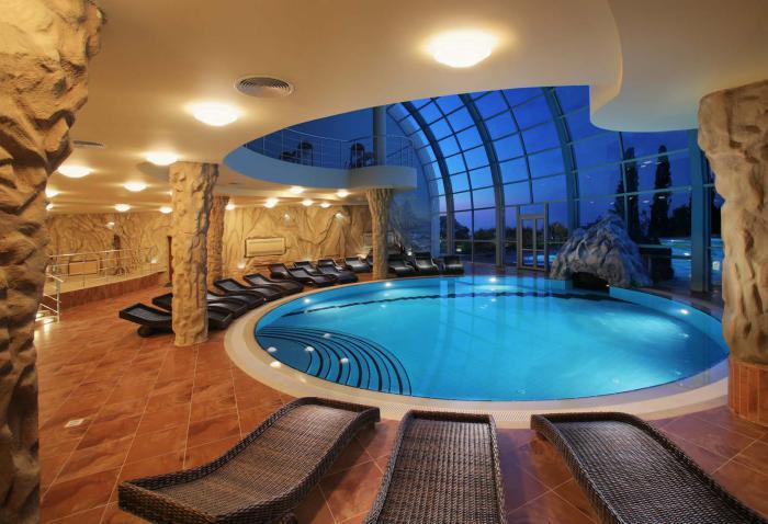 piscine-intérieure-forme-ronde-chaises-longues-mur-transparent