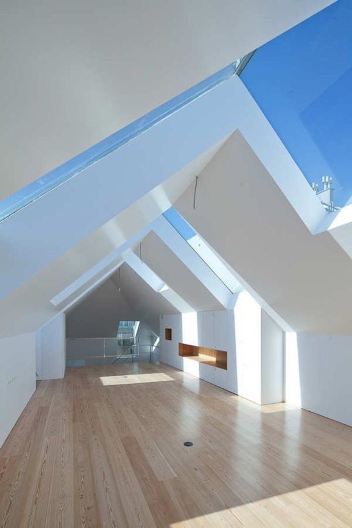 Verrière de toit et les grandes fenêtres de toit Velux: