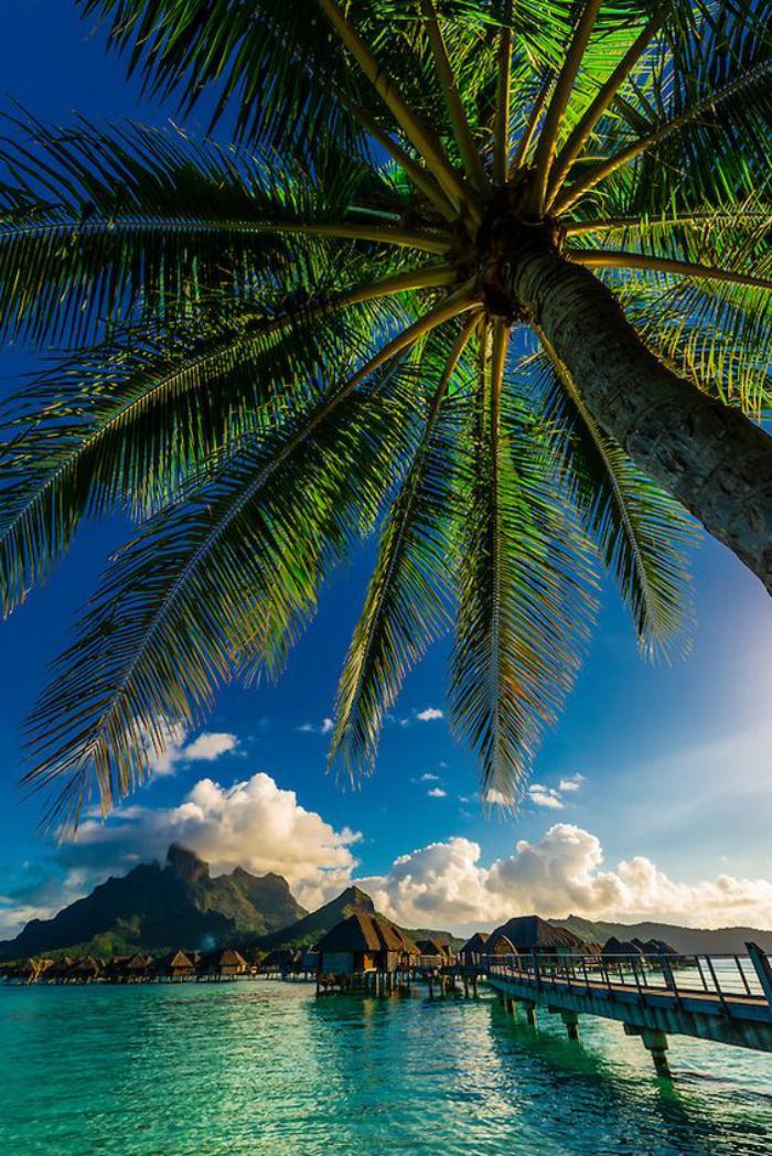 polynésie-française-voyage-images-paradisiaques-de-Polynésie
