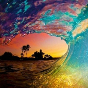 42 photos de la Polynésie Française - une destination magique