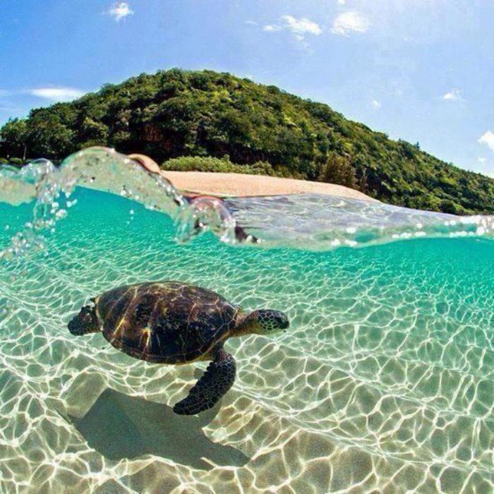 polynésie-française-voyage-séjour-Polynésie-française