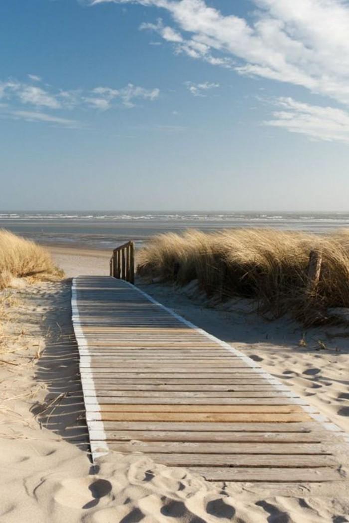 sable-blanc-trail-sur-la-plage-destination-de-reve-pas-cher-photo-plage-paradisiaque