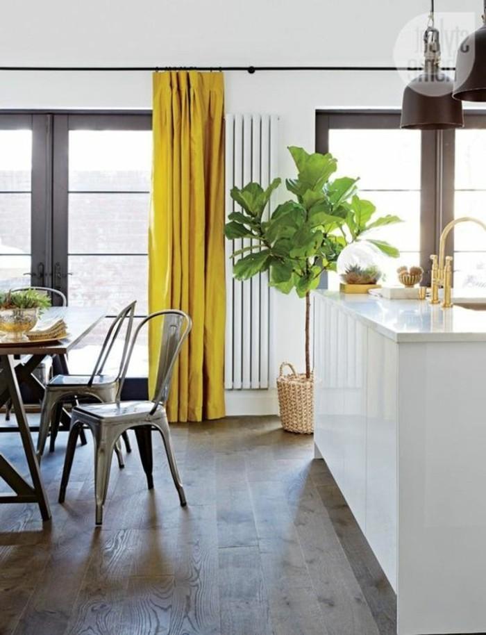 salle-de-sejour-et-cuisine-a-la-fois-parquet-en-bois-foncé-plante-verte-d-interieur