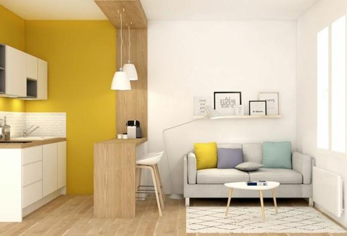 salon-chic-assortir-les-couleurs-d-intérieur-canape-gris-coussins-de-canape-gris-meubles-de-salon