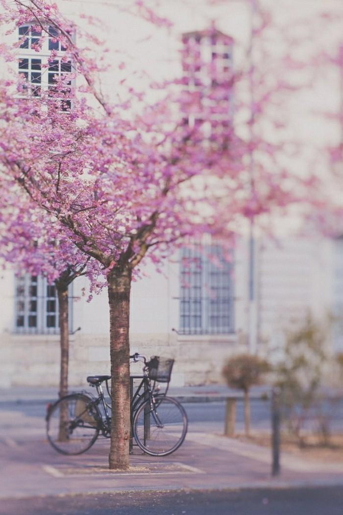 une-chouette-photo-le-vélo-ville-femme-cool-idée-quoi-choisir-pour-velo-inspiration