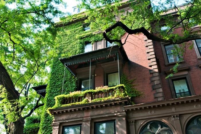 une-façade-verte-amenagement-terrasse-exterieur-idees-magnifiques