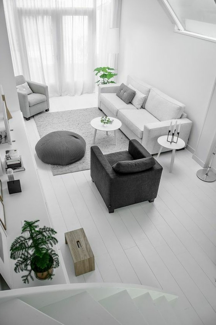 Quelle couleur pour un salon 80 id es en photos - Idee deco salon gris et blanc ...