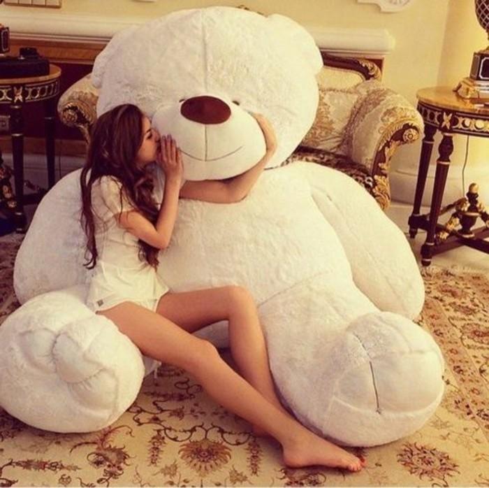 Nounours, ours en peluche, teddy bear à adopter