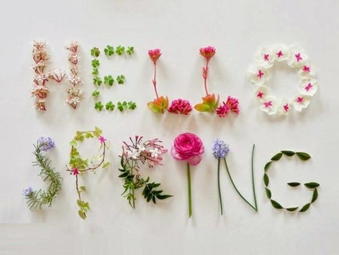 ambiance-printempière-beauté-le-printemps-est-arrivé-cool-image-nature-sentir-le-bonheur-bonjour-printemps