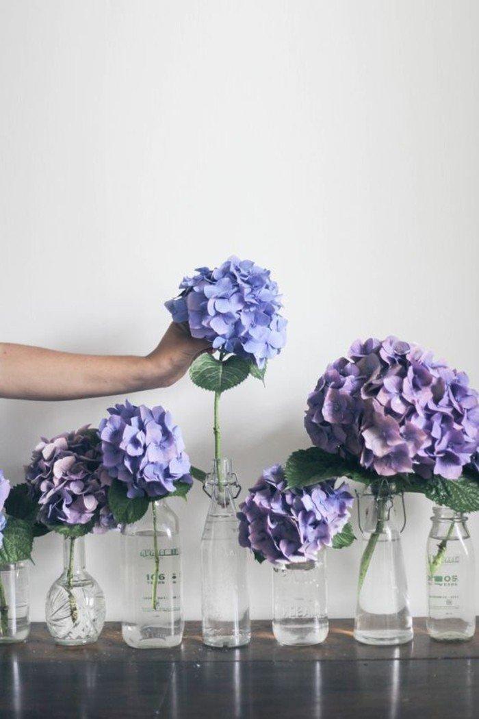 Les plus belles fleurs violettes en beaucoup d'images charmantes!