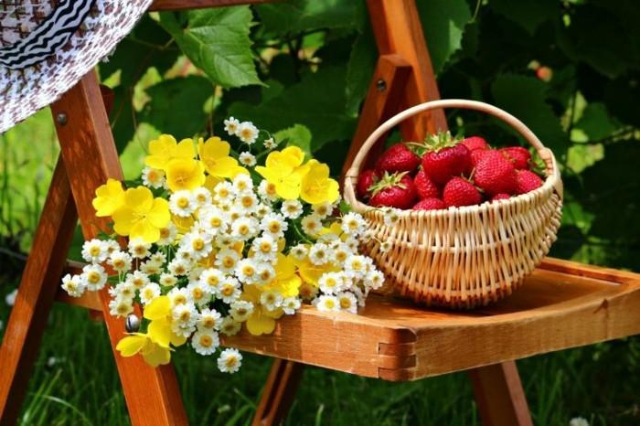 belle-nature-le-printemps-arrive-originale-image-arbre-fleurie-fraises
