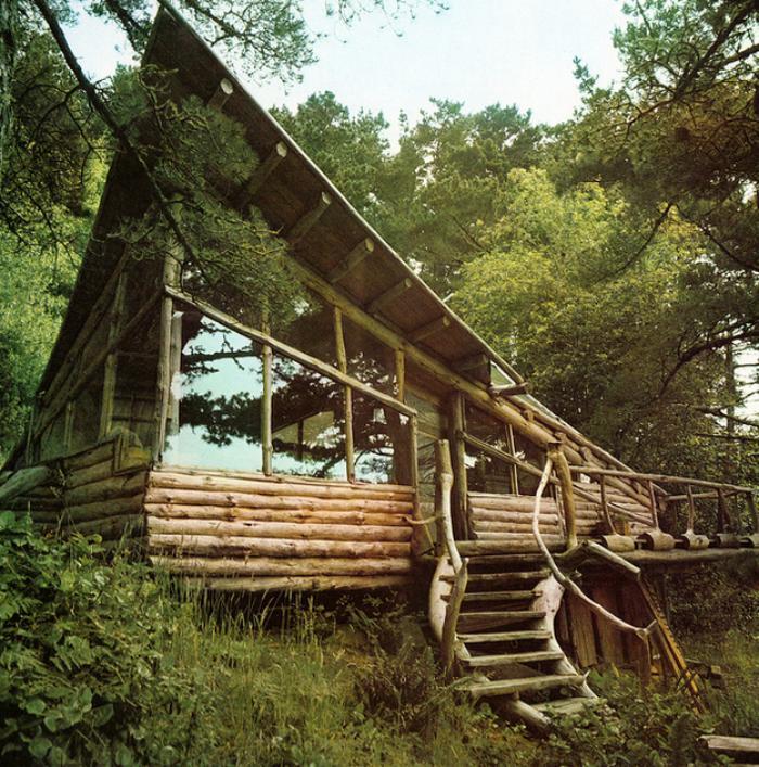 L 39 aventure de s journer dans une cabane dans les bois - Maison en pleine nature ...