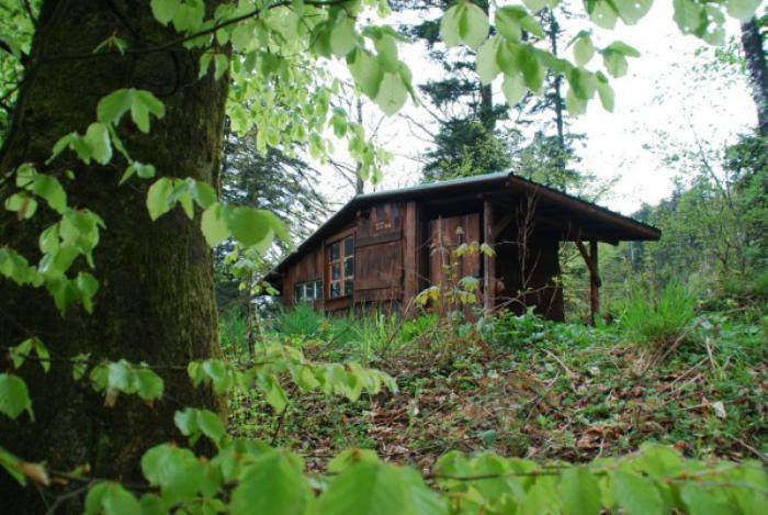 comment faire une cabane dans les bois. Black Bedroom Furniture Sets. Home Design Ideas