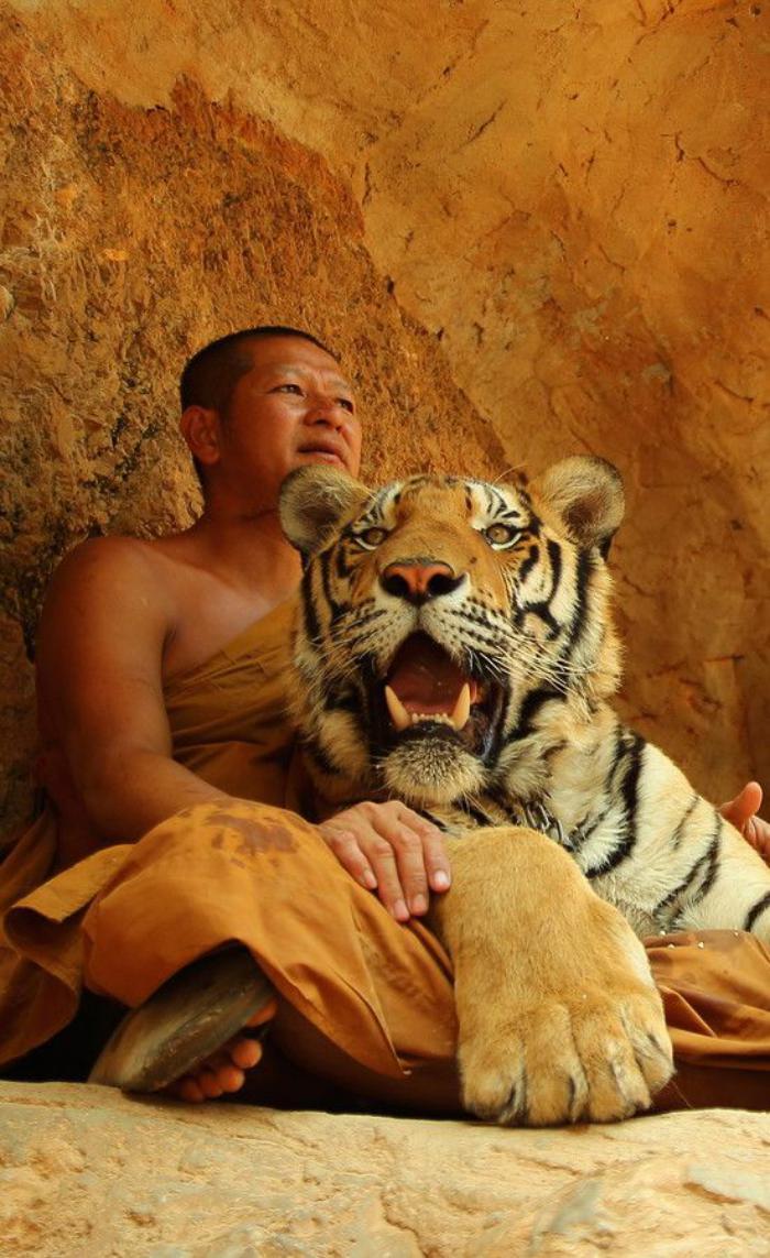 circuit-en-thailande-voir-le-famuex-temple-des-tigres-en-thailande