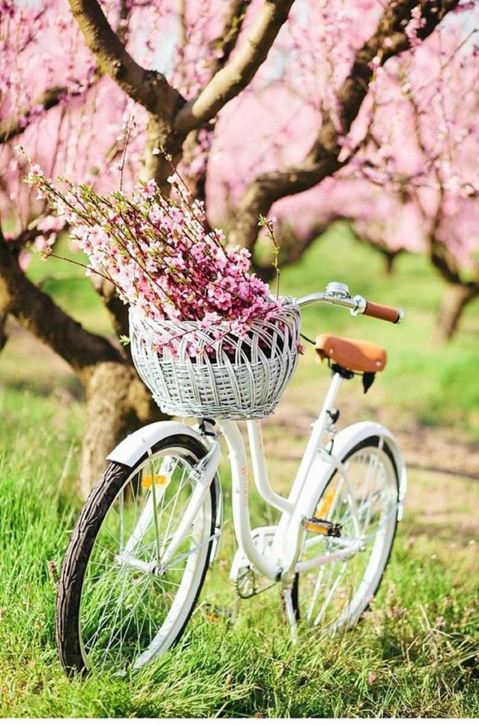 Le printemps est arriv voyez les plus belles images de printemps - Deco jardin velo paris ...