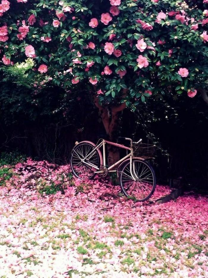 fond-ecran-printemps-paysage-à-voir-les-fleurs-et-arbres-inspiration-beauté-en-rose