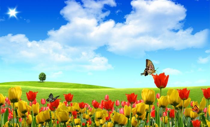 fonds-d'écran-printemps-fond-d'écran-gratuit-printemps-fond-ecran-fleurs