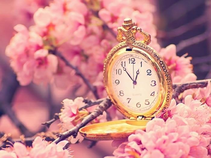 fonds-d'écran-printemps-fond-ecran-gratuit-printemps-fond-d'ecran-rose