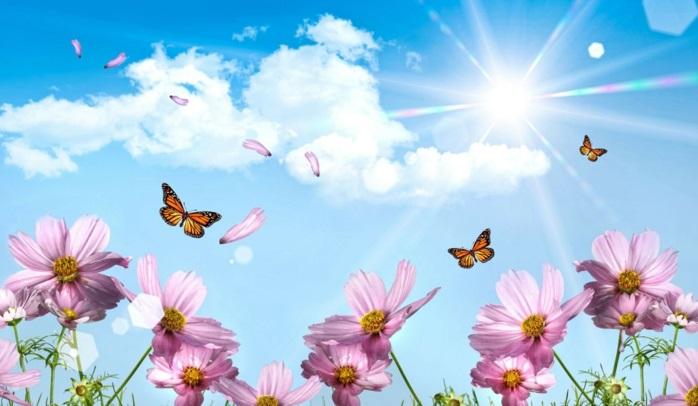 Fonds d 39 cran printemps qui vont inspirer votre journ e for Fond ecran gratuit ete