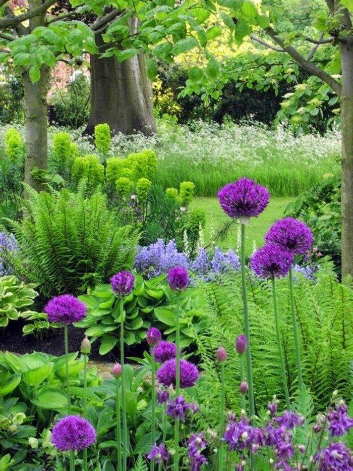 image-fleurs-violettes-les-plus-belles-images-du-monde-inspiration-natire-jolie