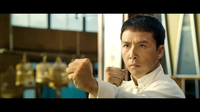 meilleur-film-art-martiaux-meilleur-film-d'art-martiaux-film-streaming-art-martiaux