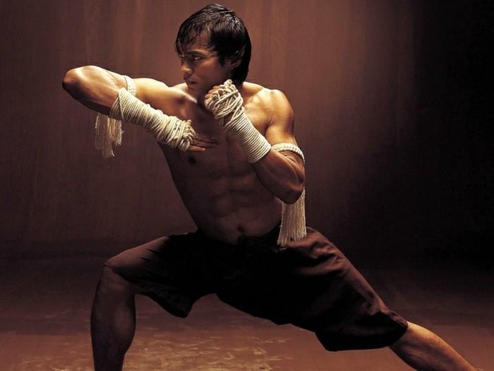 meilleur-film-art-martiaux-meilleur-film-de-combat-art-martiaux