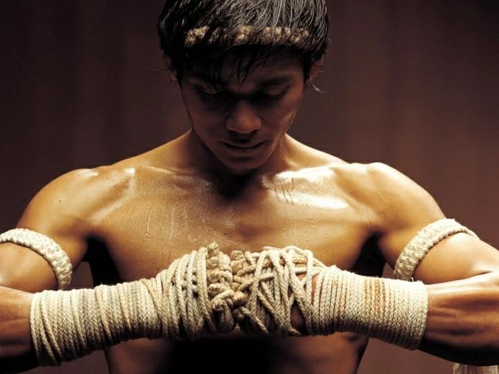 meilleur-film-art-martiaux-meilleur-film-de-combat-art-martiaux-liste