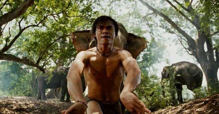 meilleur-film-art-martiaux-meilleur-film-de-combat-art-martiaux-streaming