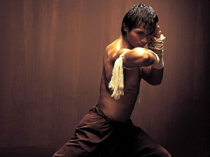 meilleur-film-art-martiaux-meilleur-film-de-combat-film-art-martiaux-2015